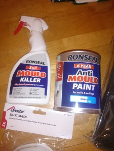 Mould killer spray and paint